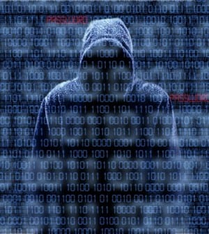Feds Arrest Password Hackers - Today's General Counsel - Today's