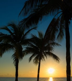 Sunrise on Fort Lauderdale Beach with palm trees in silhouette.