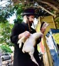 """ASHDOD - SEPTEMBER 15 :An ultra orthodox child watch his  father waves a chicken over himself during the """"Kaparot"""" ceremony held on September 15 2010 in Ashdod Israel."""