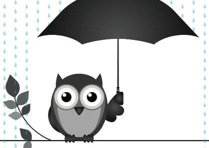 OWL WITH UMBRELLA 34649542 420