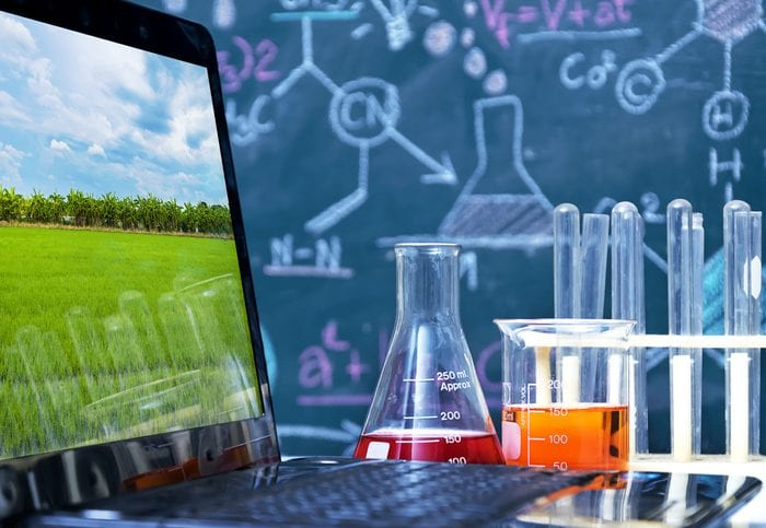 Genetic improvement Scientist checking sample of wheat,doing about change at research,Beaker with chemicals used in experiments,Wheat picture in a laptop,The backdrop is a chemical formulas writing.